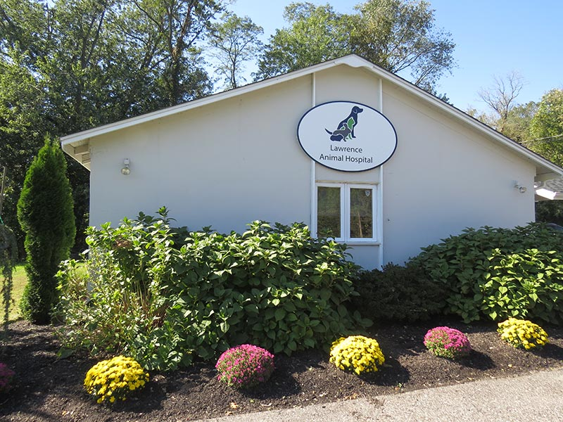 veterinary clinic in Princeton